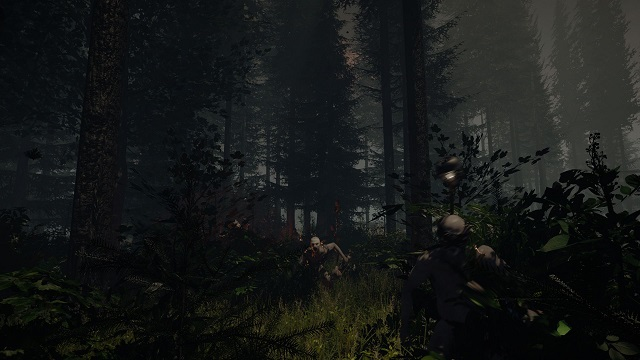 Survival is Harder Than it Seems in The Forest [Preview]